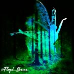 Faeries fir Folklore with Dexter Skyhook by Floyd Bacca